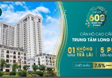 Chính sách TSG Lotus Long Biên